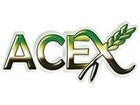 thumb_acex